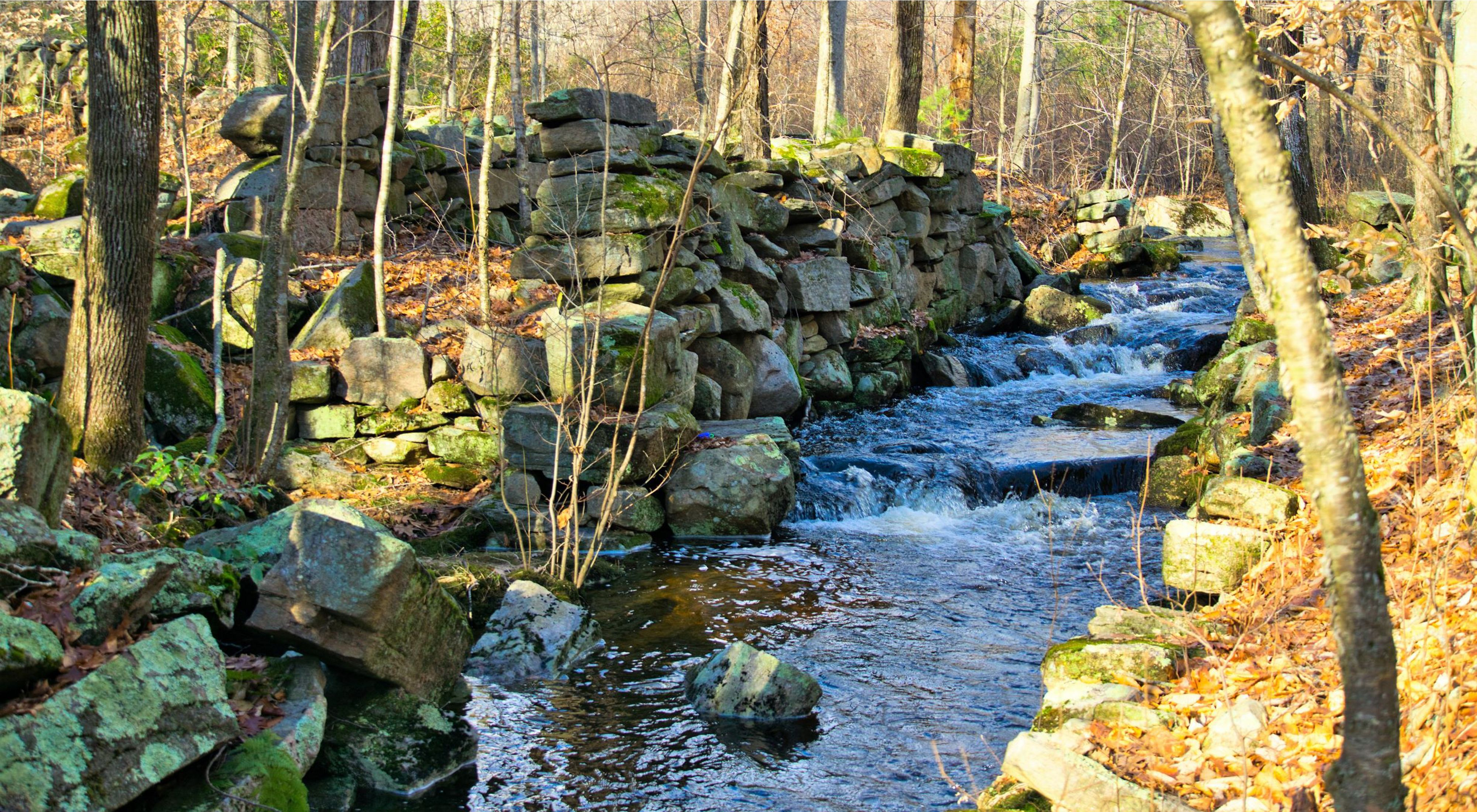 A small stream flows through the stone ruins of an old mill surrounded by forest.
