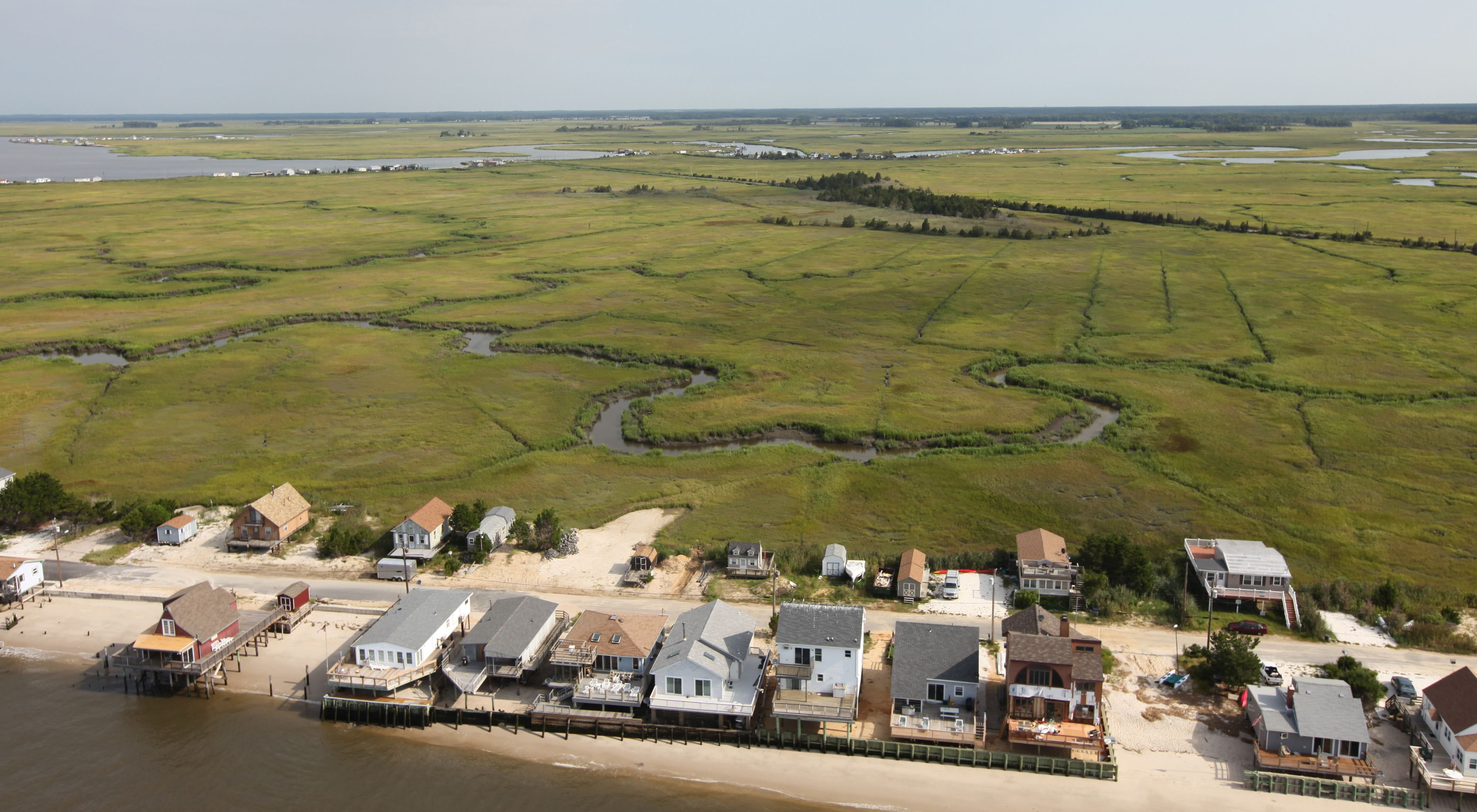 Cape May NWR