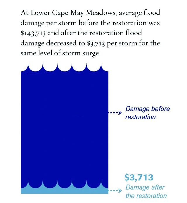 Infographic of Cape May flood damage