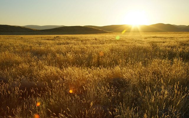 Carrizo Plain is best seen in the early morning and evening light, when shadows enhance the topography.