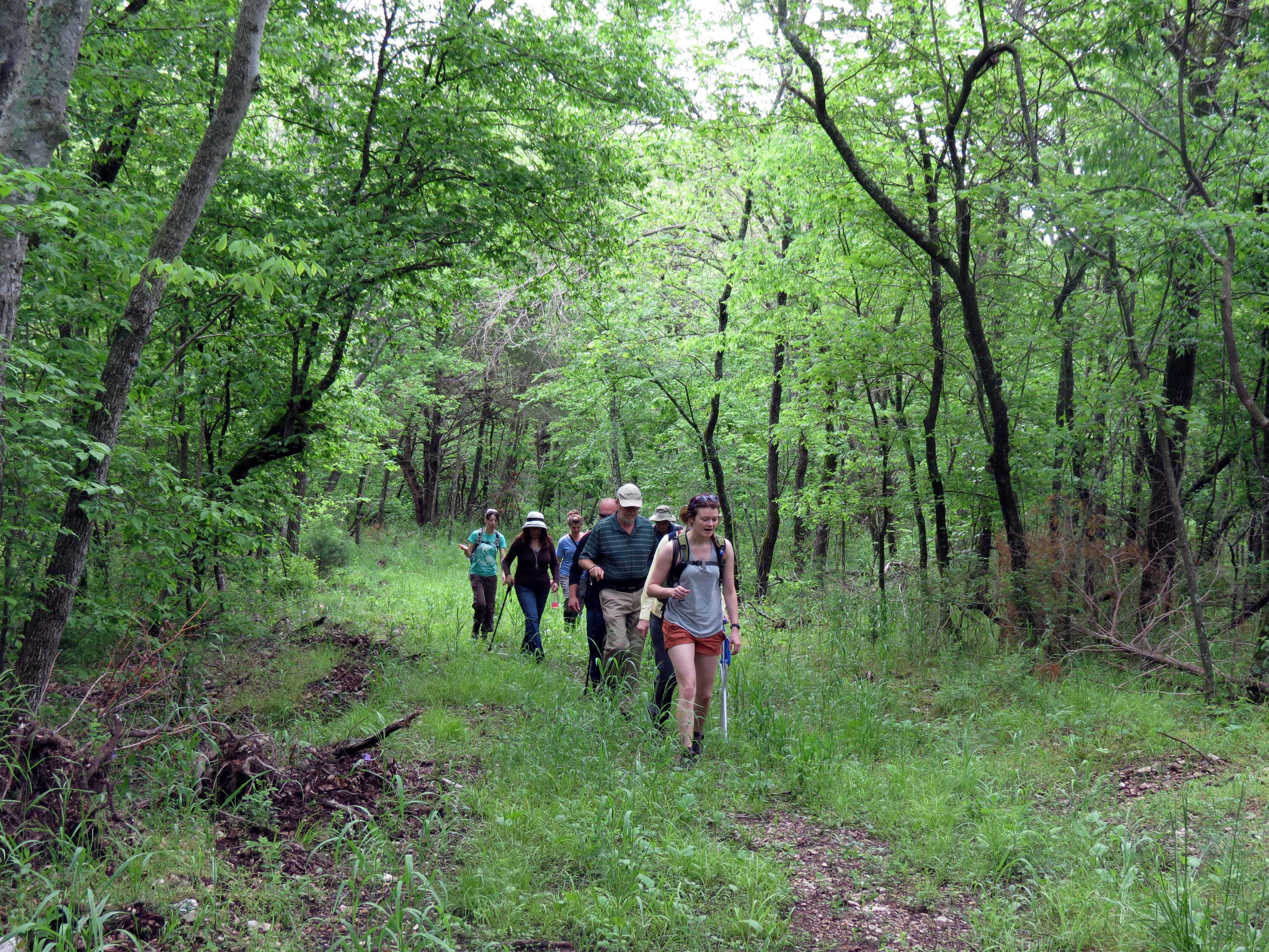 Hikers on the trail.