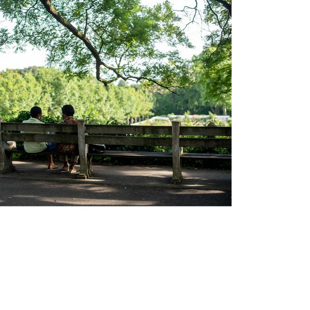 Two people sitting on a park bench facing a park.