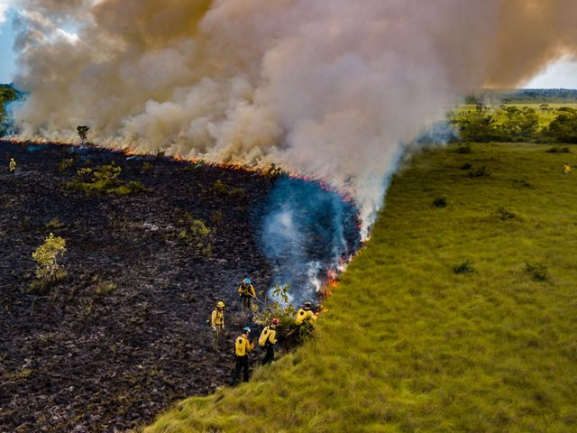 Aerial view of a group of people monitoring a controlled burn as gray smoke billows from the fire line.
