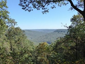 Trees frame a valley view of Chestnut Mountain.