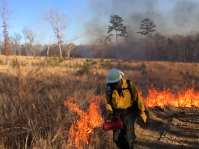 A man in a yellow vest and helmet sets a grassland on fire.