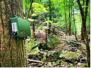 A green piece of equipment is attached to a tree trunk.