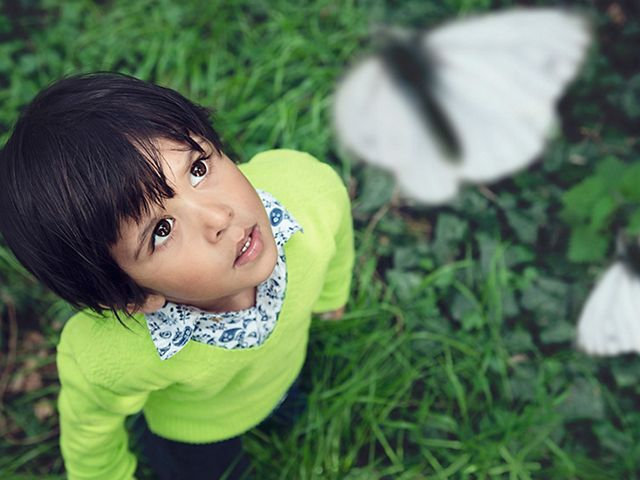 A child stares in wonder at butterflies floating above their head.