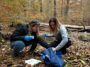 Two women crouch next to each other in a forest. They are both wearing blue latex gloves and holding small implements for water sample collecting. They are placing their samples in a blue container.
