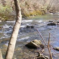 Swift creek waters pass over a collection of rocks.