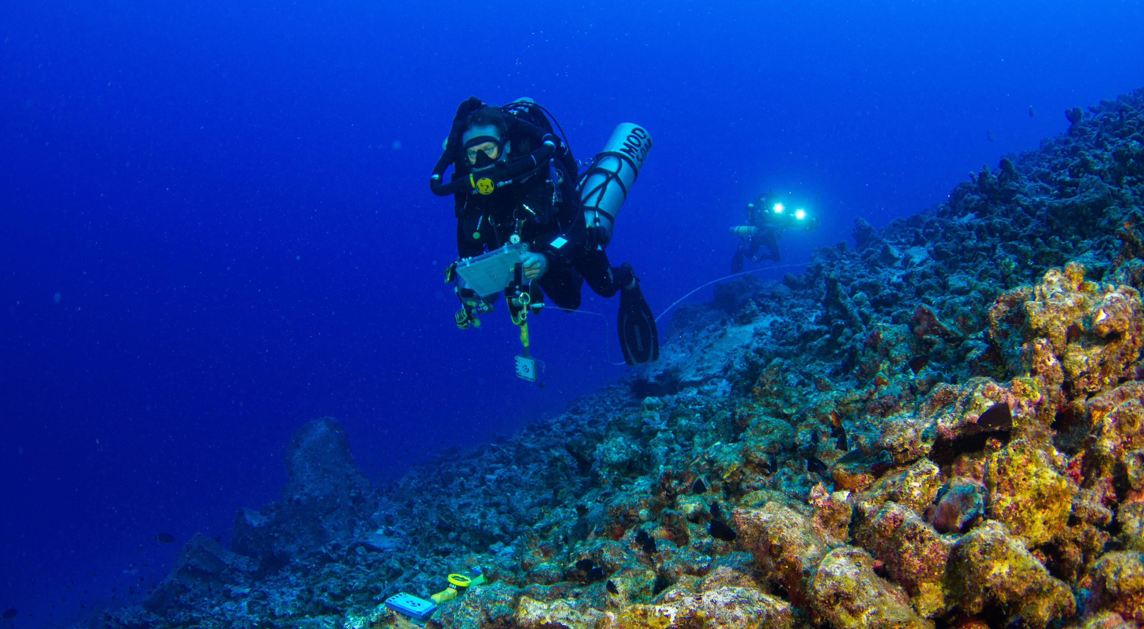 to study coral reef resilience.