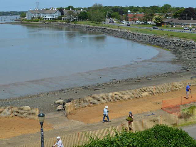 The site of a salt marsh restoration at Collins Cove in Salem, Massachusetts, one type of living shoreline approach being studied as part of a regional project.