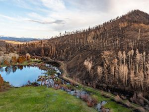 Wildfire burn scar near Kremmling, Colorado.