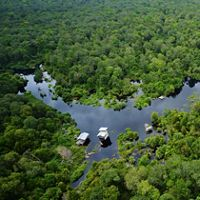 Aerial view of the peat dome in Riau Sumatra. Protecting peatlands is important for global climate regulation.