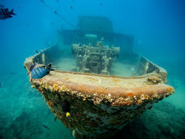 A shipwreck off the coast of the Dominican Republic.