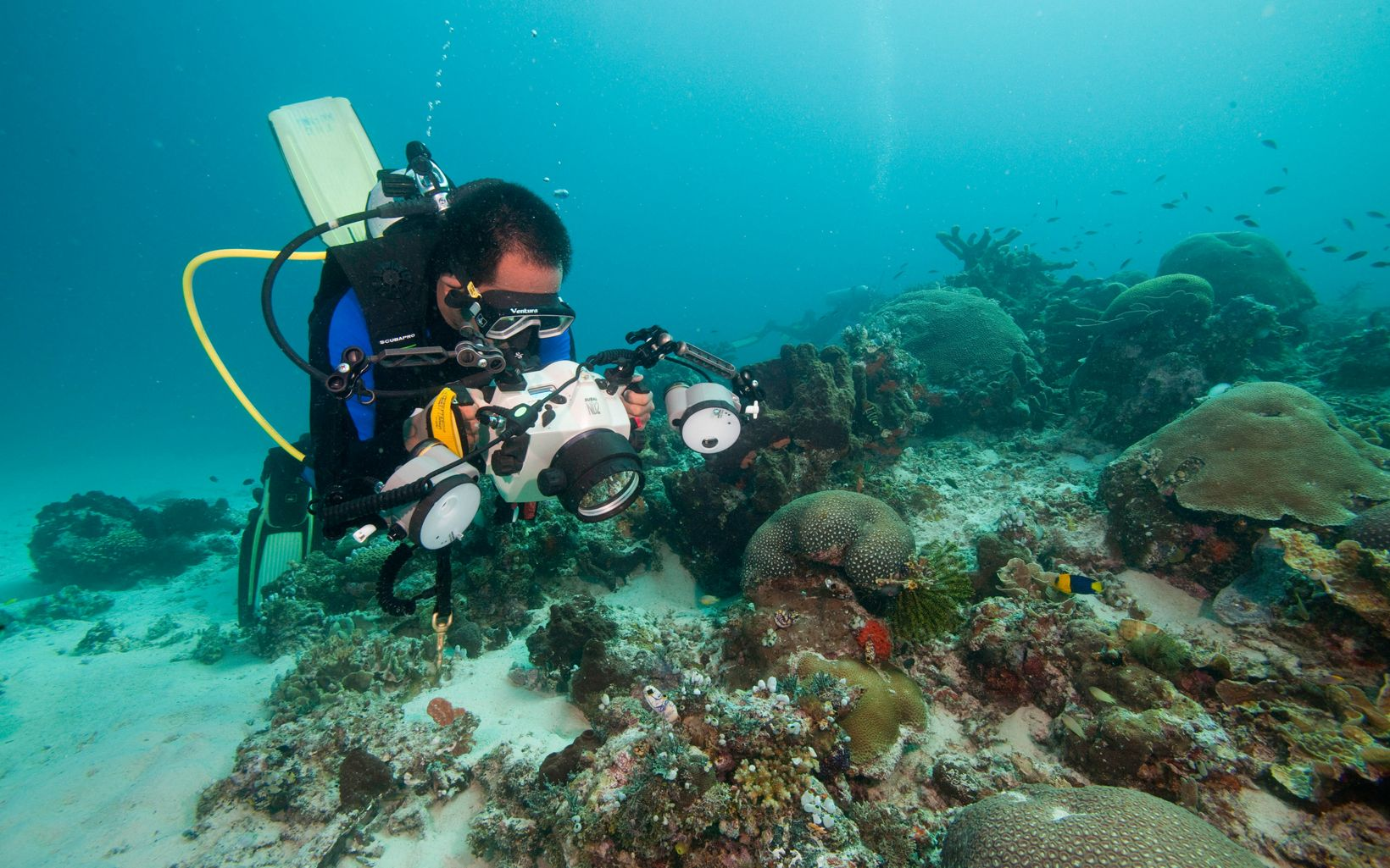 Muhajir McLauda (with TNC), photographing healthy corals and sponges in the waters off Kofiau, part of the Raja Ampat Islands of Indonesia.