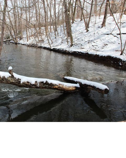A creek at the Cherry Valley National Wildlife Refuge in Pennsylvania is surrounded by a snowy landscape.