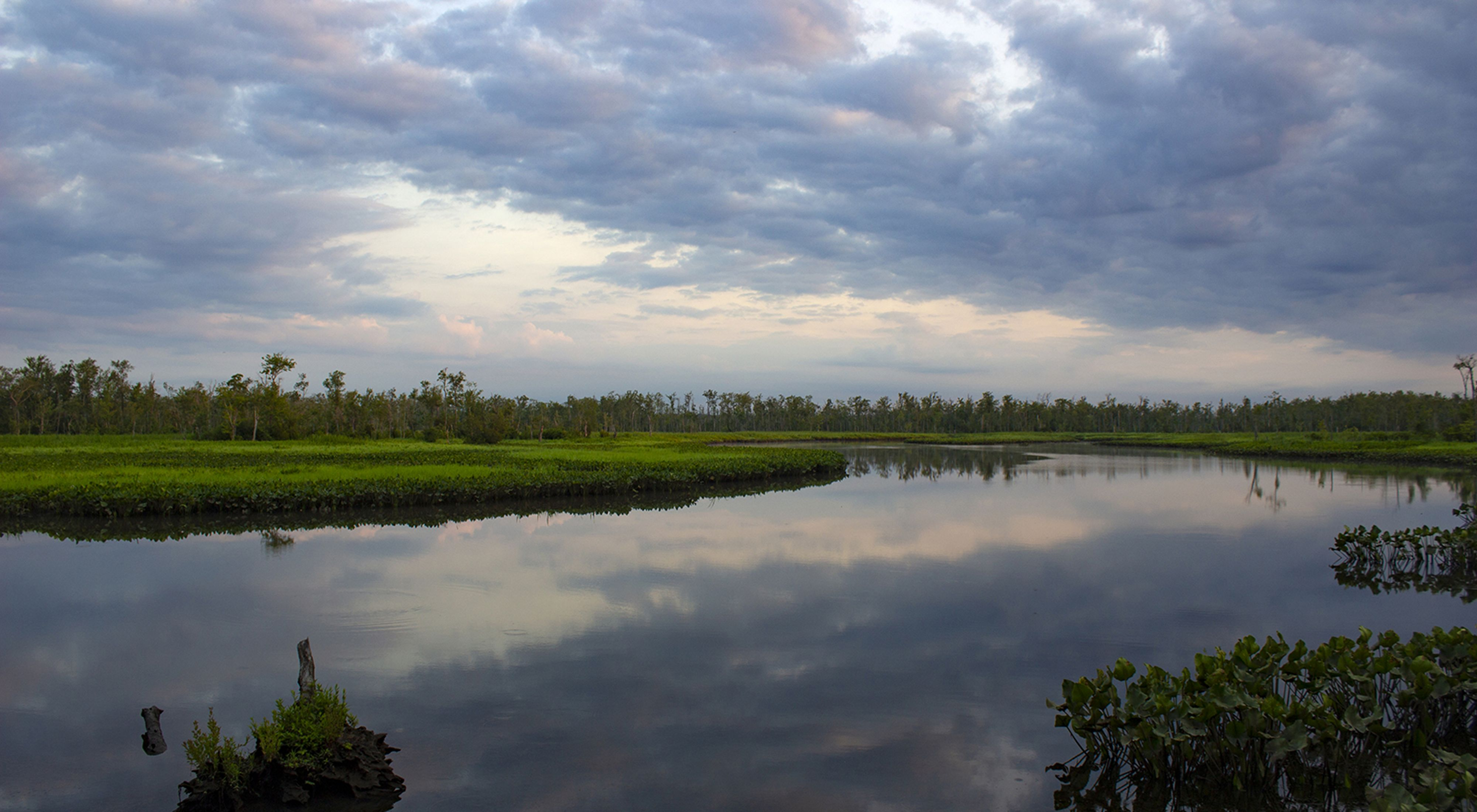 Low morning clouds are reflected in the still water of a creek that winds through green wetlands.