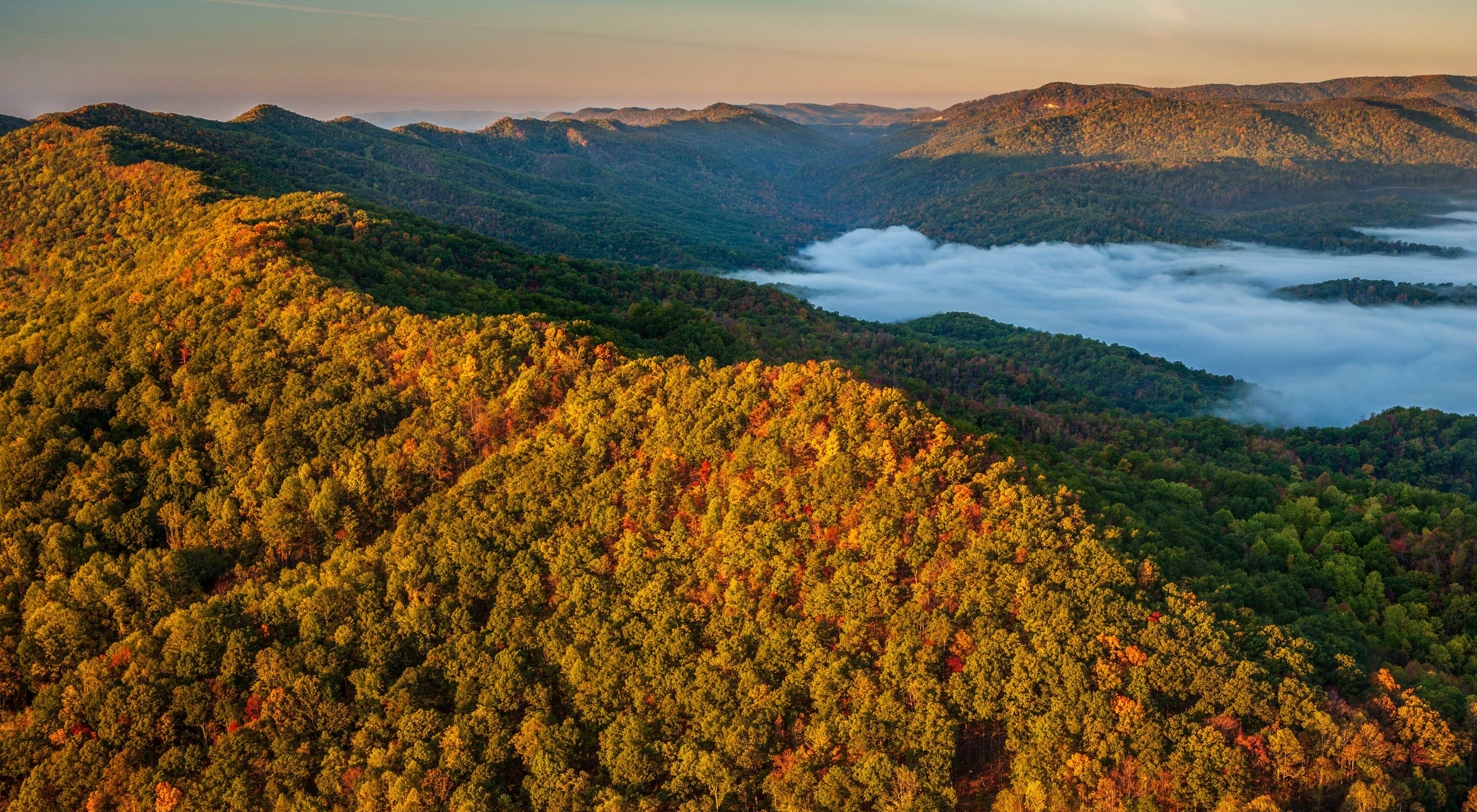 A mist rises up next to a colorful forested ridge.