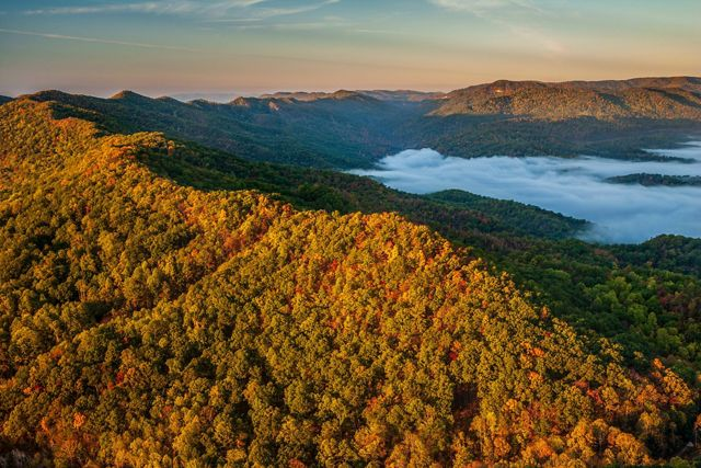 Aerial photo of Cumberland Mountains in Tennessee in bright fall foliage colors with mist in the valleys.