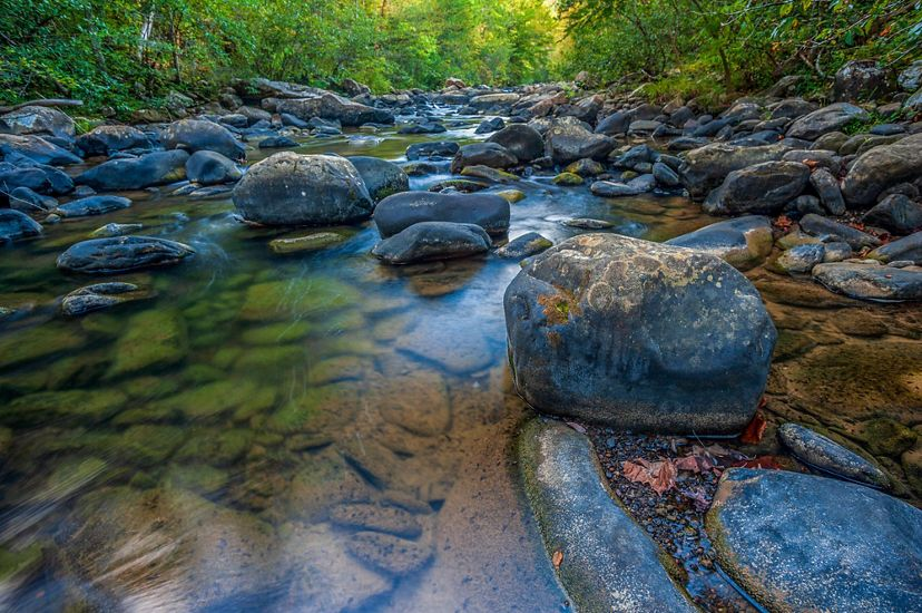 Low angle view of a wide stream. The creek bed is filled with large rocks and stretches away from the viewer towards the horizon. The banks are heavily lined with mature trees.