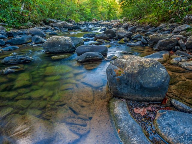 Water flows over scattered rocks in a stream.