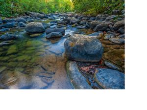 Tackett Creek, a stream with large stones and reflections, located on the Ataya Tract of the Cumberland Forest Project in Tennessee