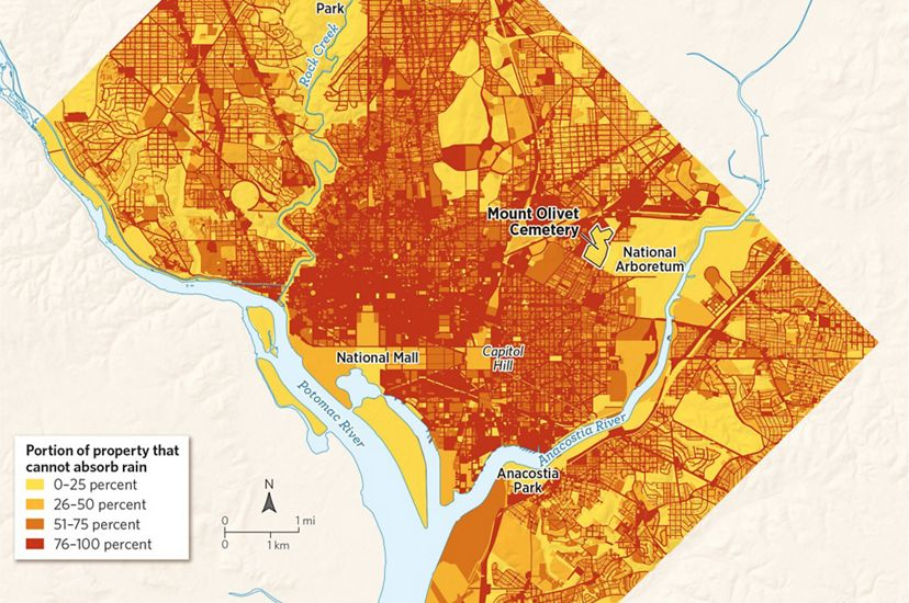 A map of Washington, D.C., where red areas cannot absorb stormwater.
