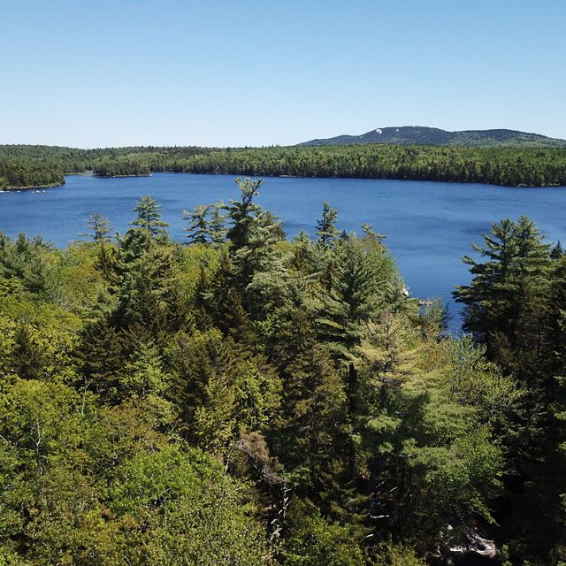 Photo of view across lake of forest and a low mountain in Downeast Maine.