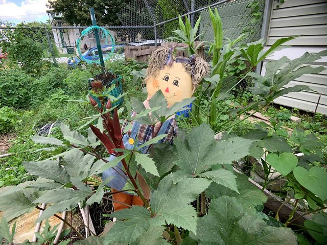a scarecrow with a smile sits in a planter of a small garden