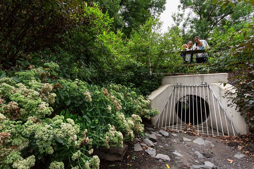 A woman and two small children stand on a foot bridge looking down as a stormwater culvert. The opening under the bridge is shielded by a metal grate designed to catch large debris.
