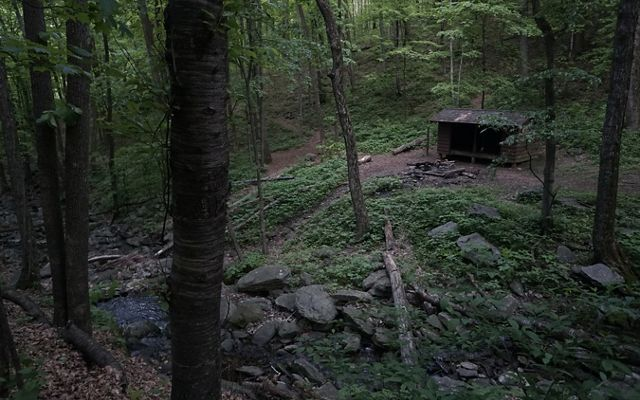 A roofed, three sided shelter is nestled in the woods above a stone lined creek. The area is heavily shaded by the tall trees.