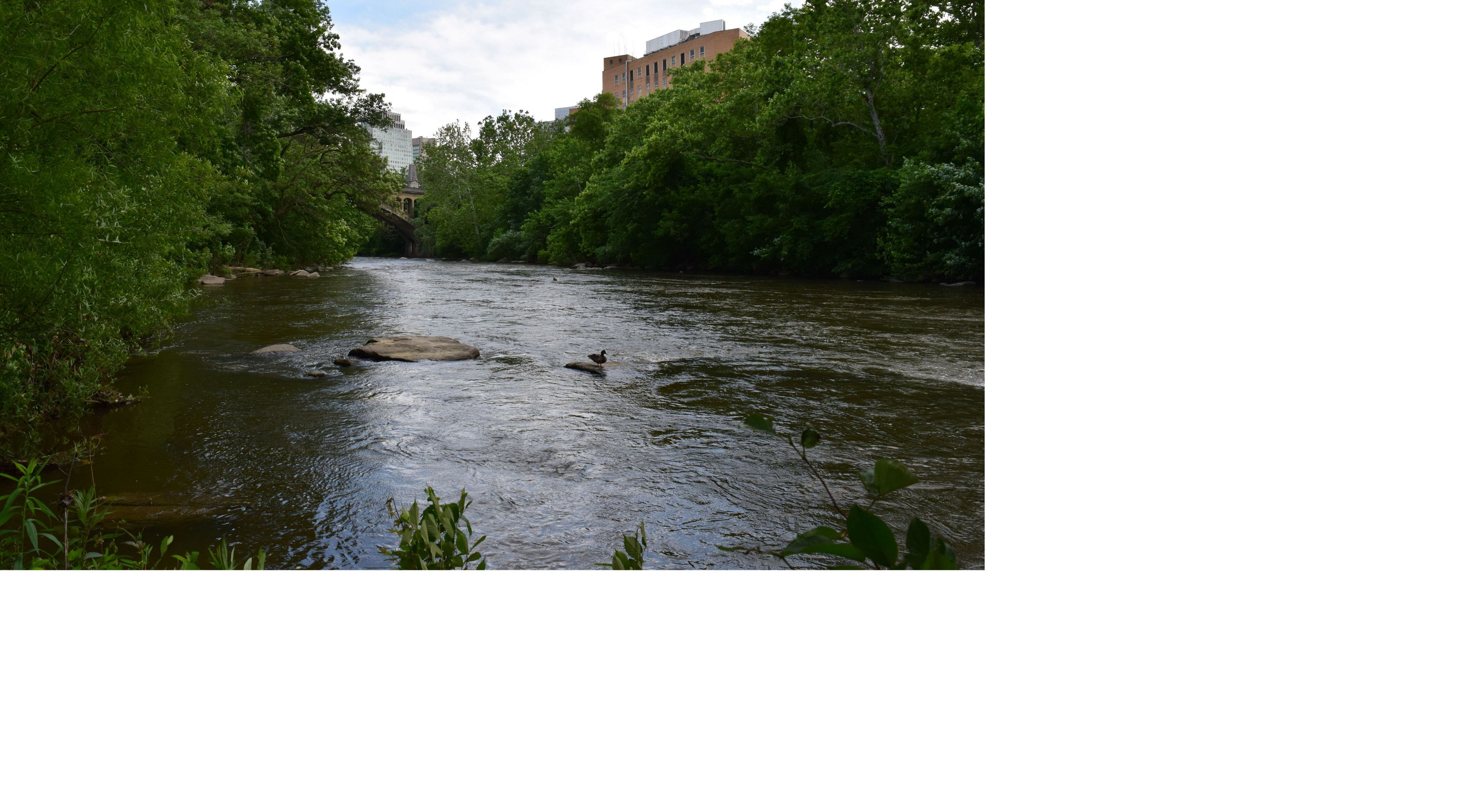 The Brandywine River flows between tree lined banks in the city of Wilmington, DE. An arched bridge spans the river in the background. City buildings rise behind the trees.