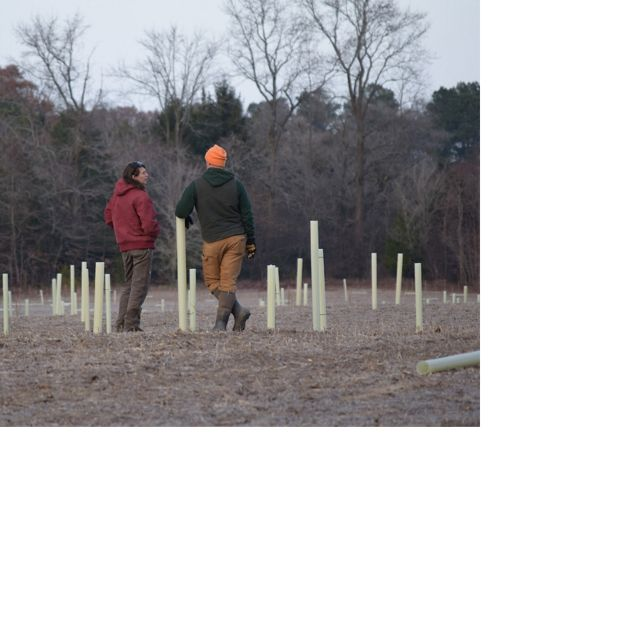 (left) talks with a contractor during the planting phase of the reforestation project at the Edward H. McCabe Preserve (in December 2018).""