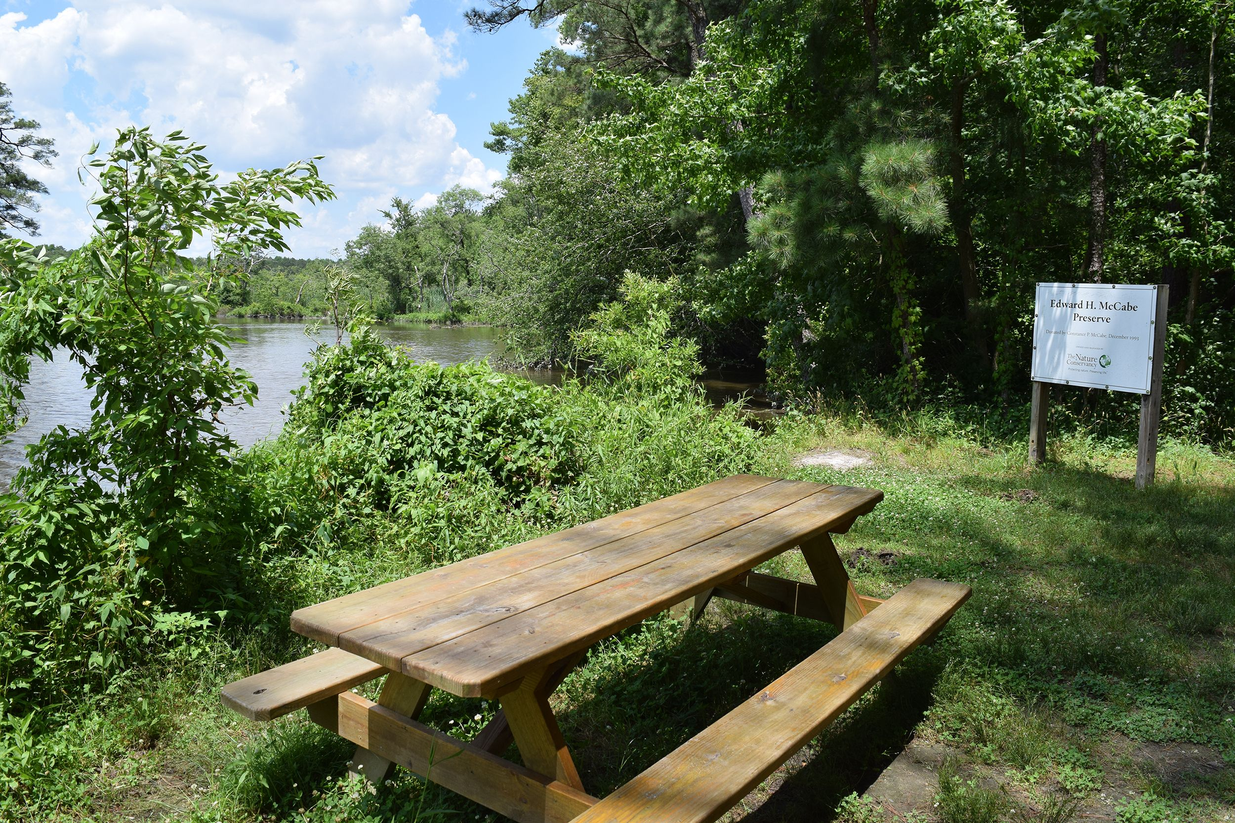 A wooden picnic table sits next to a wide river. The table is shaded by the tall trees that grow along the river bank. A sign in the background reads, Edward H. McCabe Preserve.