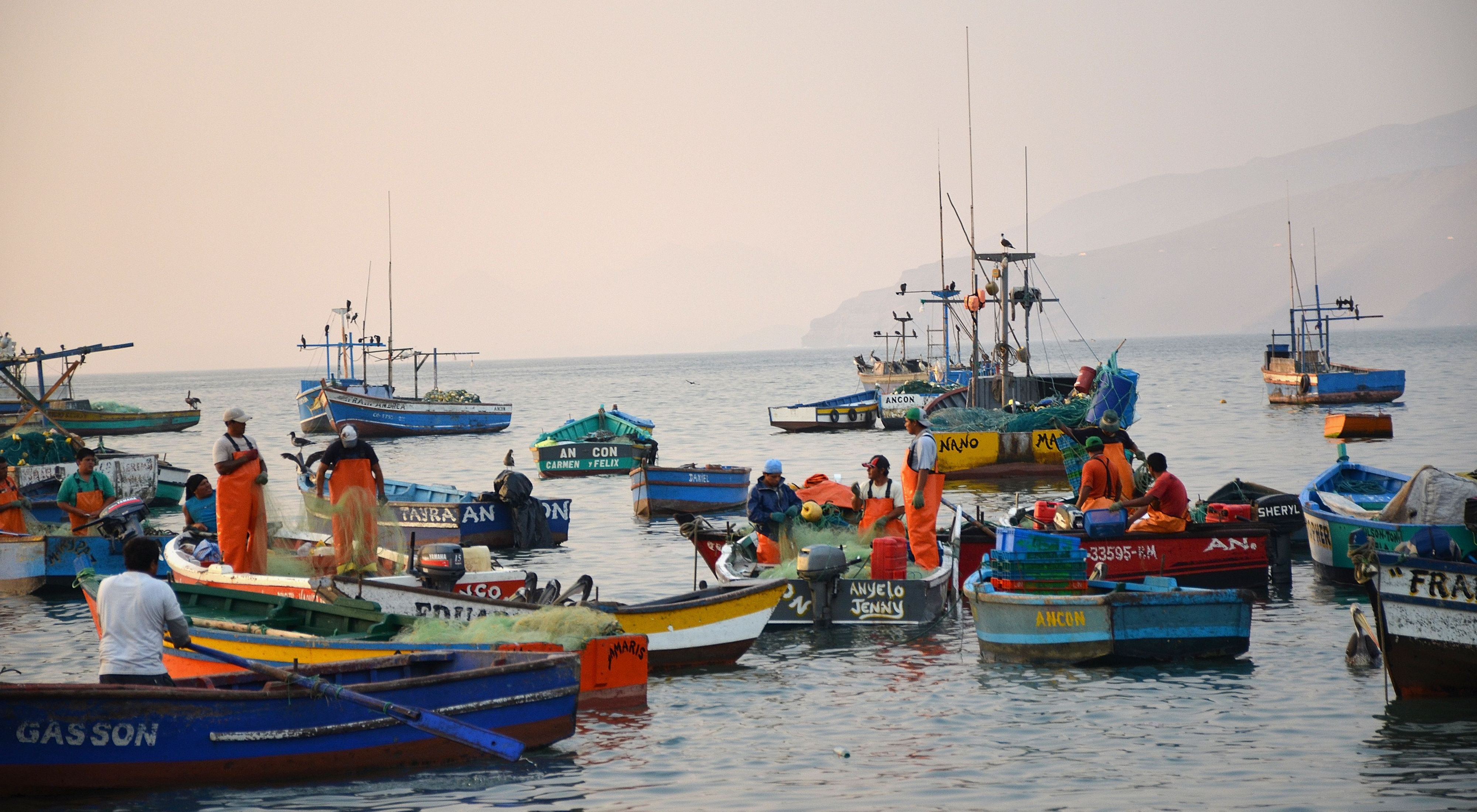 a group of fishers in small fishing boats on the water