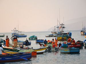 a group of fishers on small boats in the port of Ancón, Peru