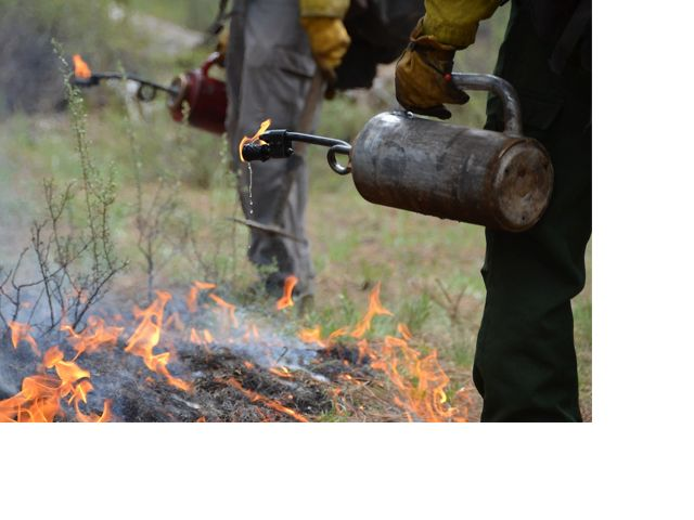 Controlled burn Oregon driptorch