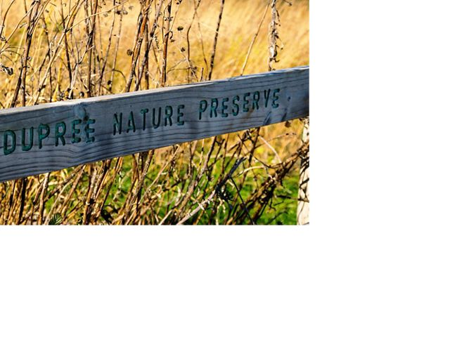 A preserve name is carved in wood and painted green.