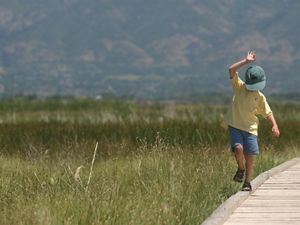 A kid balances on the boardwalk of the Great Salt Lake Shorelands Preserve.