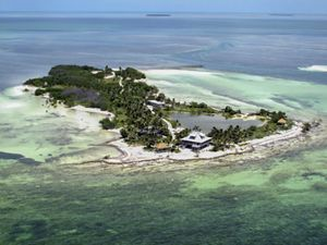 island with lots of green palm trees and white sand see