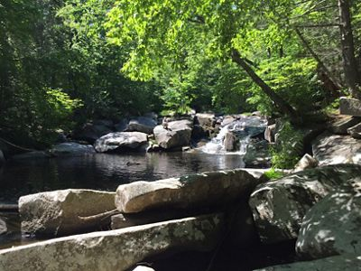 A small waterfall in a stream surrounded by big boulders and leafy green trees.