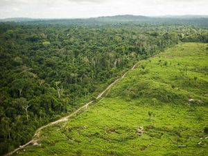 Aerial view of deforestation in northern Brazil.