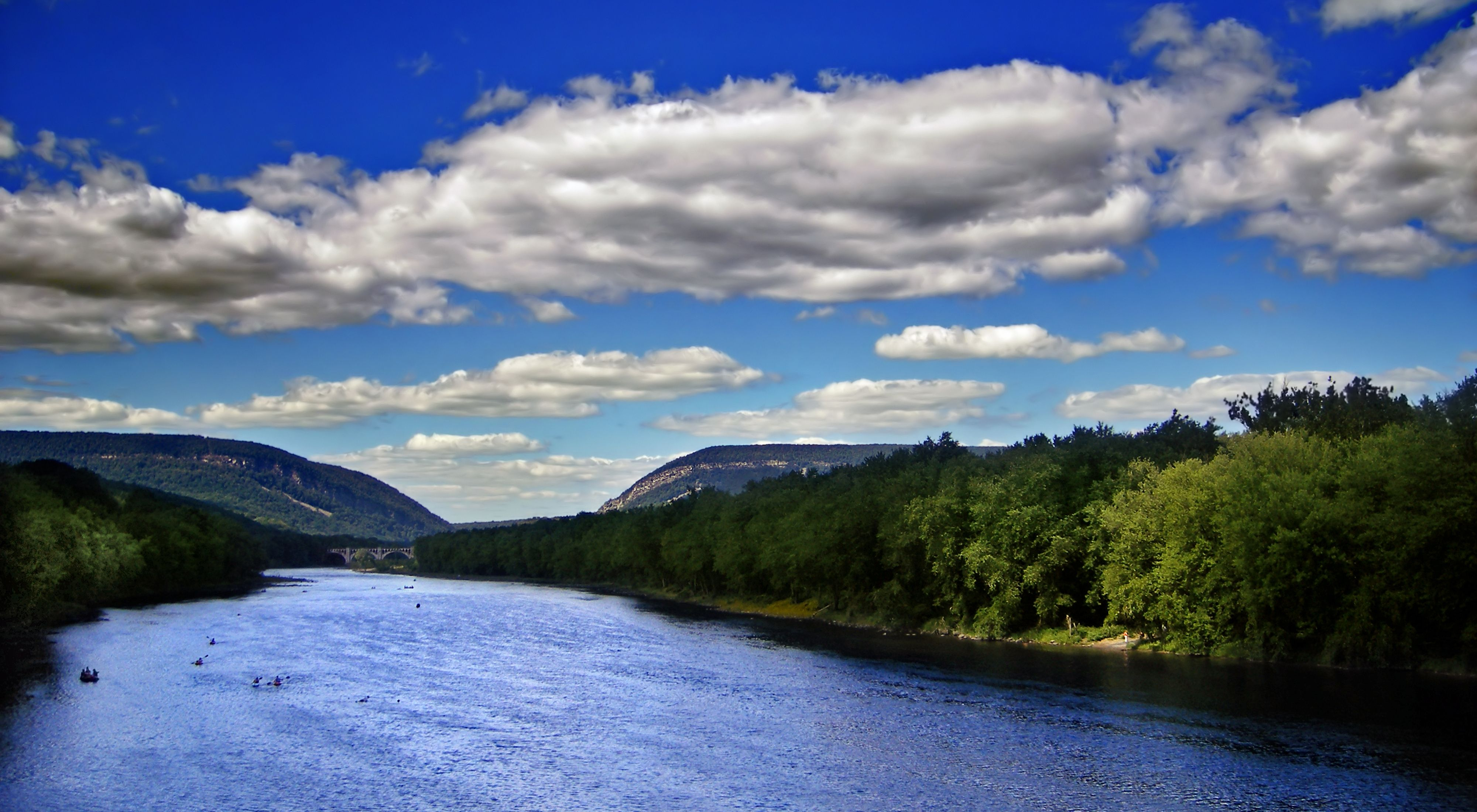 A river flows through abundant trees under a blue sky and puffy clouds.
