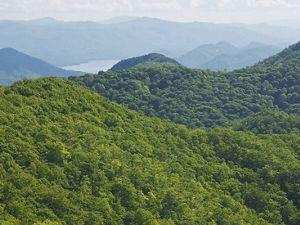 A thin fog veils a large, green mountain range.