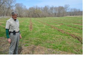 Dr. Middleton stands next to one of his fields.