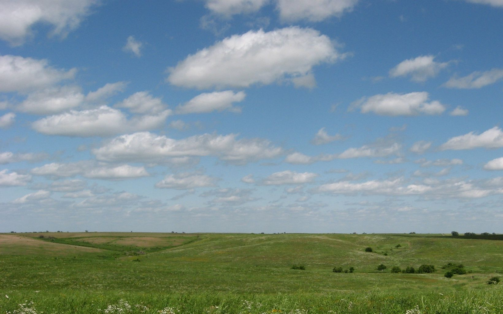 Rolling hills of Dunn Ranch Prairie.