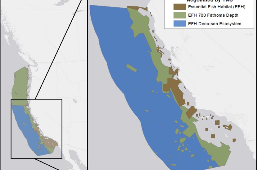 Map showing a large swath of area off the coast of California that has been protected by TNC.