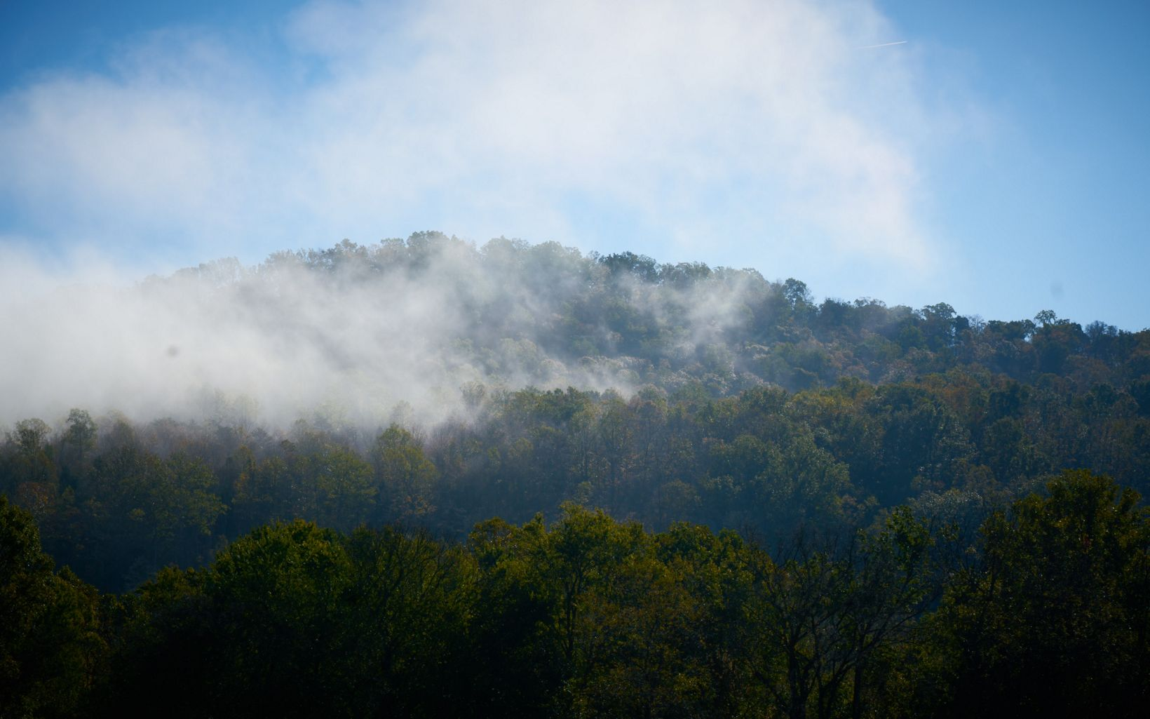 Mist over tree-covered hills.