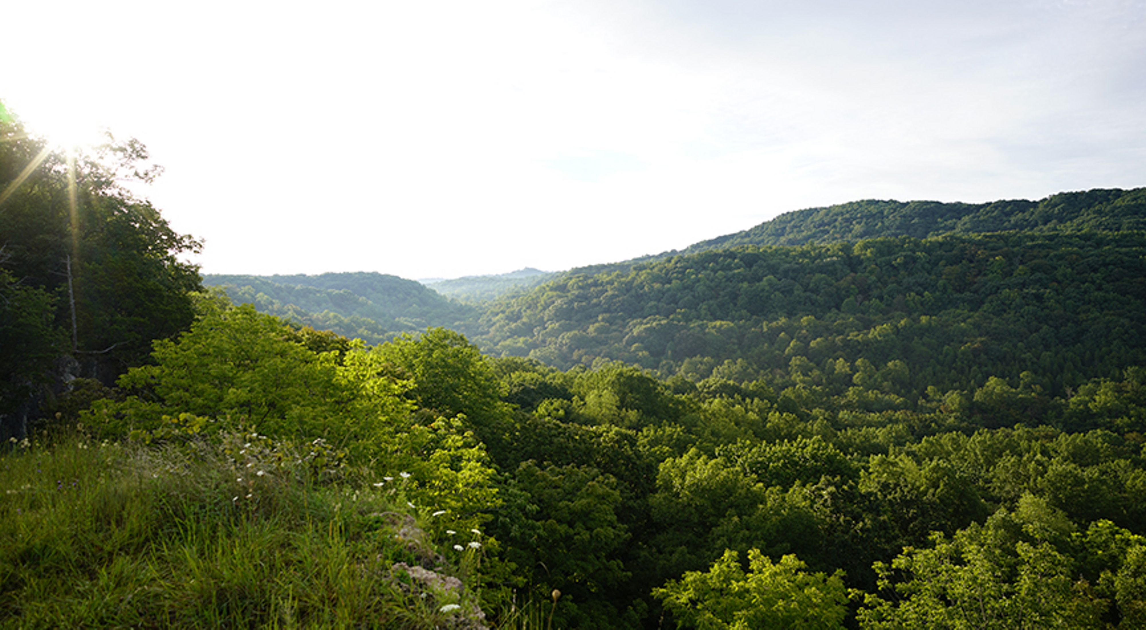 View from the Buzzardroost Rock Trail