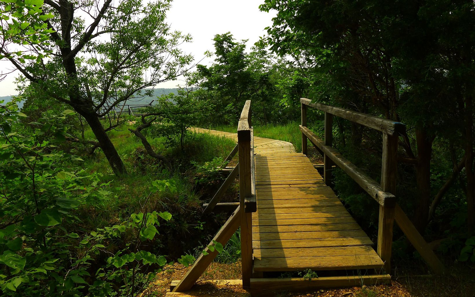The moderate to difficult trail travels through woodlands and prairie remnants and then out to the ultimate view.  Once you see this boardwalk you are almost there.